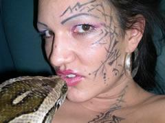 Australian Snake Sex