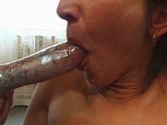 Animal Taboo Orgy