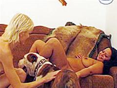 Blondes Dog Sex