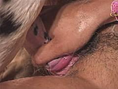 Blowjob Horse Sex