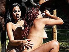 BDSM Zoo
