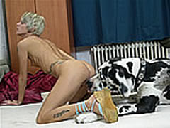 Classmate Sex With Animals
