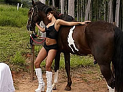 Counselor Horse Sex