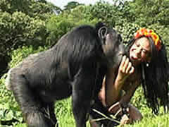 Country Bestiality Orgy With Chimpanzee